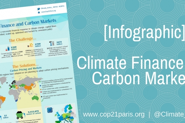 Climate Finance and Carbon Markets